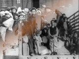 Ebrei deportati e Palestinesi idem