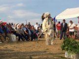 Lakota-Sioux-