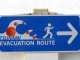 Tsunami-virus-free